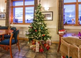 juletre08_radhuset