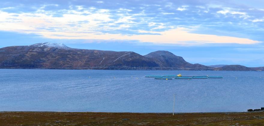 Sametingsråd fornøyd med at Fiskeridirektoratet har opphevet tillatelsen i Vedbotn