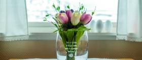 Skal selge tulipaner i Honningsvåg