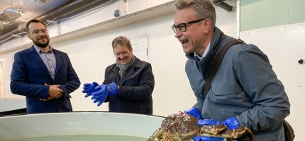 Endrer ikke grensen for kongekrabbefisket