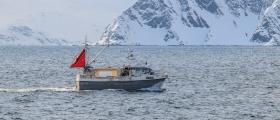 Mest hyse levert i Øst-Finnmark