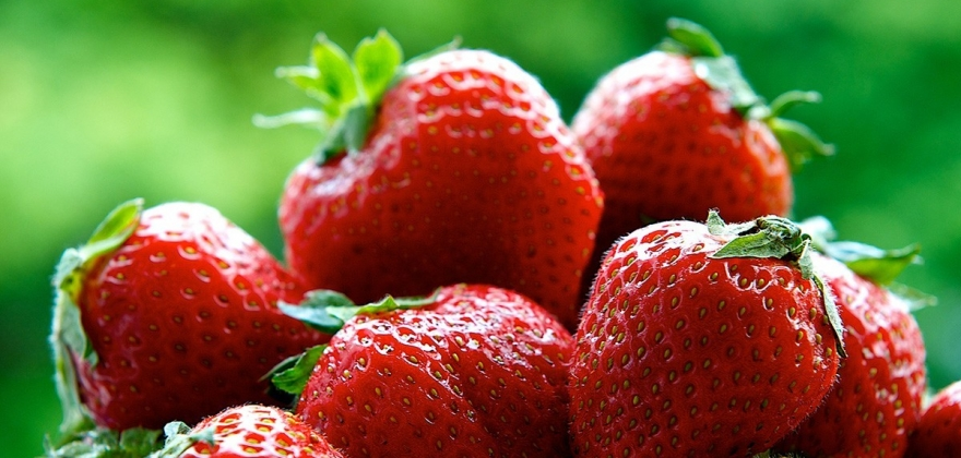 Nordmenn elsker norske jordbær