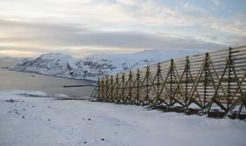 Har rustet opp Finnmark-veger for 230 millioner kroner