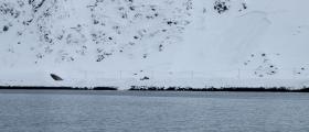 Venter stor snøskredfare i Nord-Norge