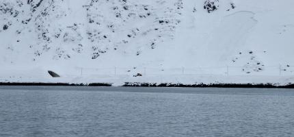 Vegen til Nordvågen åpen for fri ferdsel