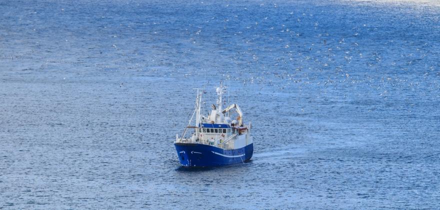 Minsteprisene for torsk og sei var ikke tema under forhandlingene