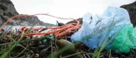 Plast på norske strender kommer fra de nærmeste havområdene