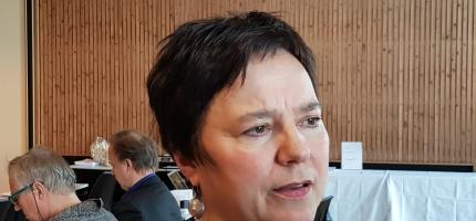 Stiller ikke til valg som fylkesordfører