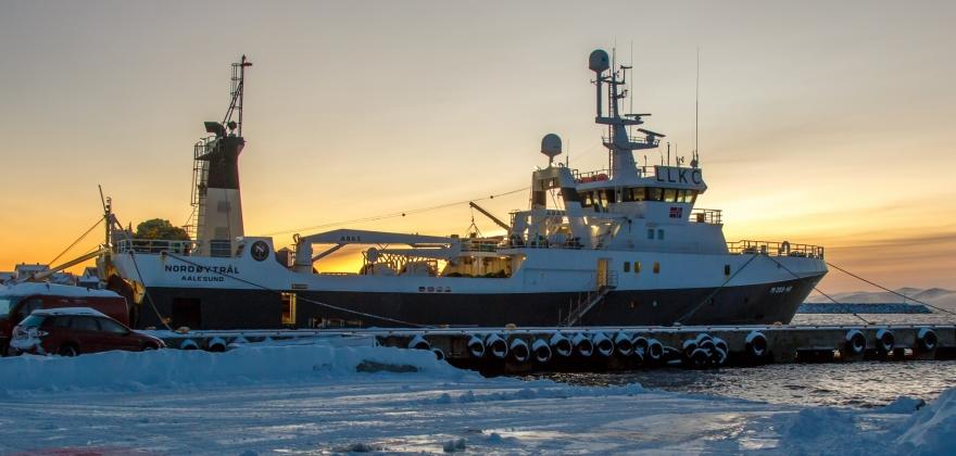 Flere trålere på Nordkappbanken