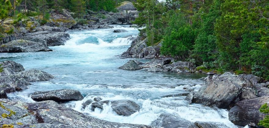 Et normalår for laksefiske i Finnmark