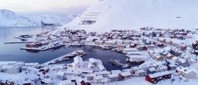 Vinter på Magerøya, se det slik fuglene opplever øya