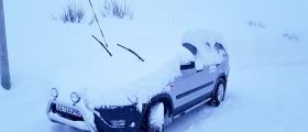 Endelig kom det sne