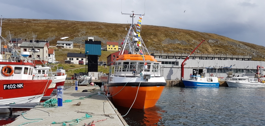Oppsving for ungdomsfisket