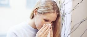 Holder seg hjemme fra jobb og skole på grunn av pollenallergi