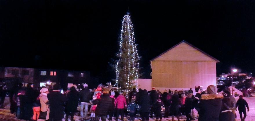 Julegrana tent på rådhusplassen – se filmen