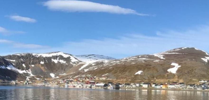 Skjøt nise fra båt utenfor Nordvågen