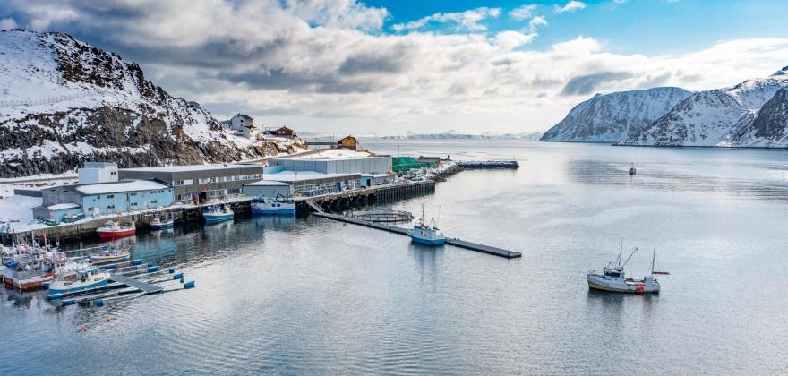 Torskefisket i Finnmark