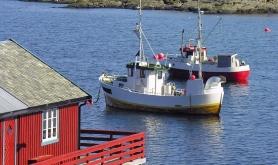 Bl�kveitefisket i gang