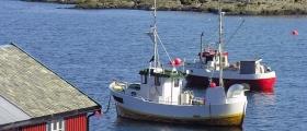 Hvem er yrkesfiskeren og hva tjener vedkommende?