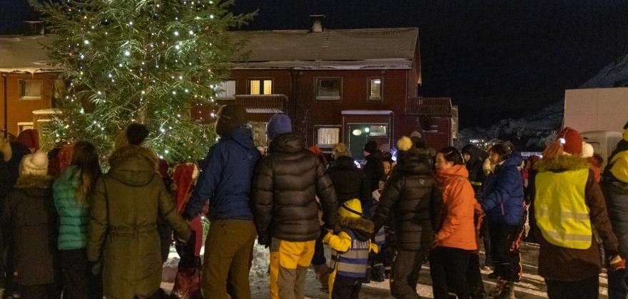 Julegrana tent i Honningsvåg – se filmen