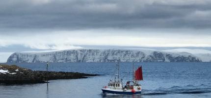 Avgifter i fiskerinæringen